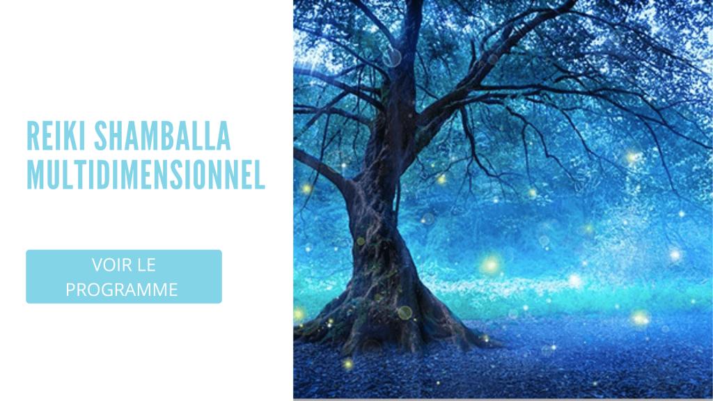 Reiki Shamballa Multidimensionnel