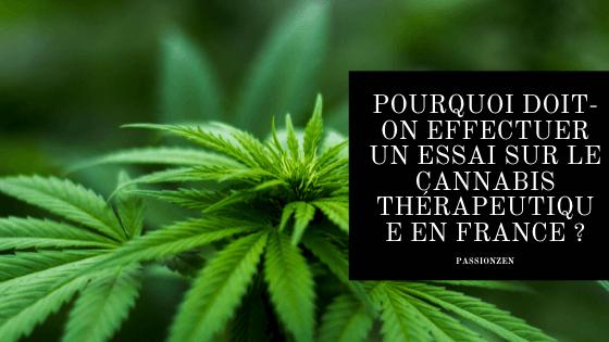Pourquoi doit-on effectuer un essai sur le cannabis thérapeutique en France